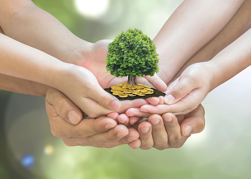 Retirement planning and family investment concept with wealthy tree growing on parent -children's hands